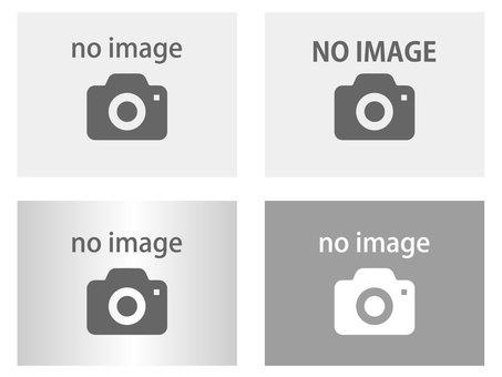 noimage image camera