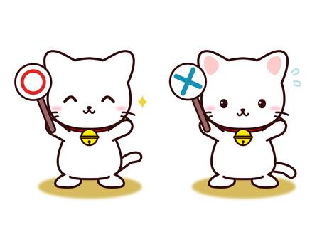 Neko (○ ×)