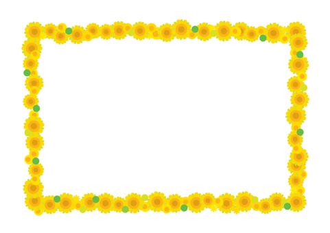 해바라기 프레임