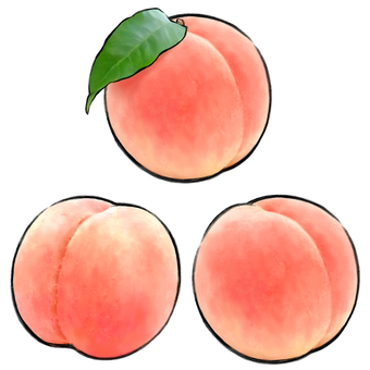 Fruit (peach)
