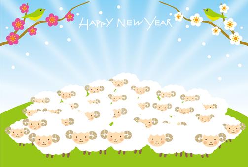 Sheep and sunrise greeting card