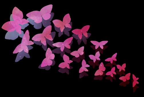 Sheer Butterfly Postcards