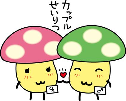 Couple established marriage mushroom