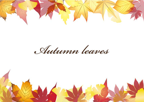 낙엽 가을 프레임