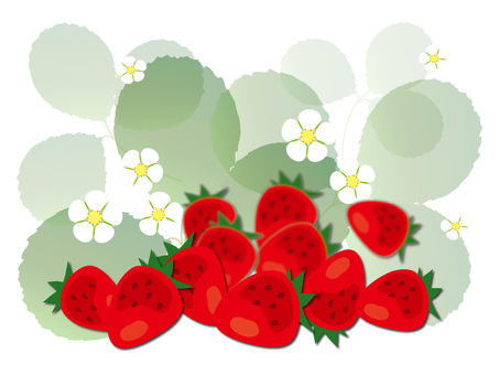 Strawberry background 2