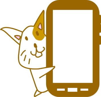 스마트 폰 고양이