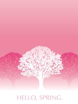 만개 한 벚꽃 나무 배경