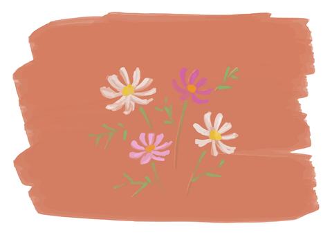 手描きのコスモスイラスト