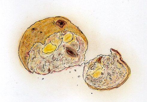 Natural Yeast Panties and Raisins
