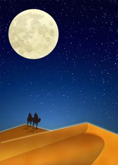 月亮的沙漠