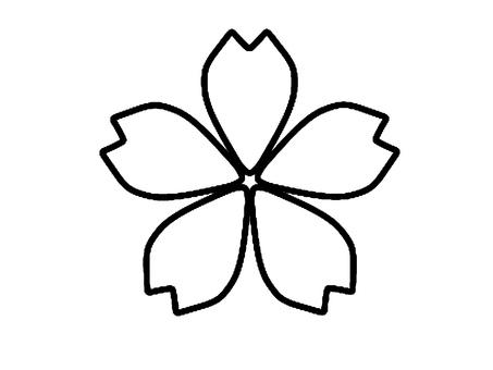 벚꽃 (흑백)