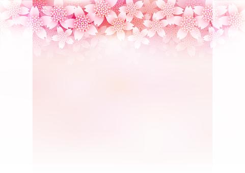 Cherry Blossoms & Frames 11
