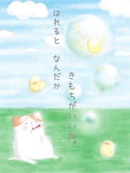 Soap bubble ~ ♪