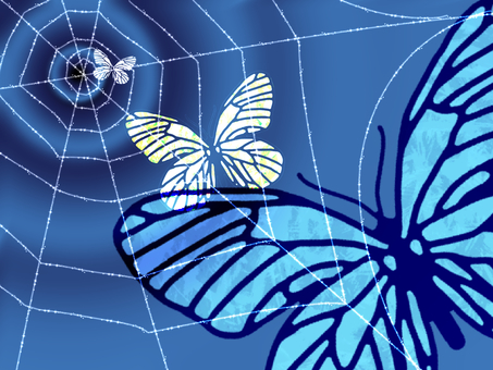 Spider web and butterfly