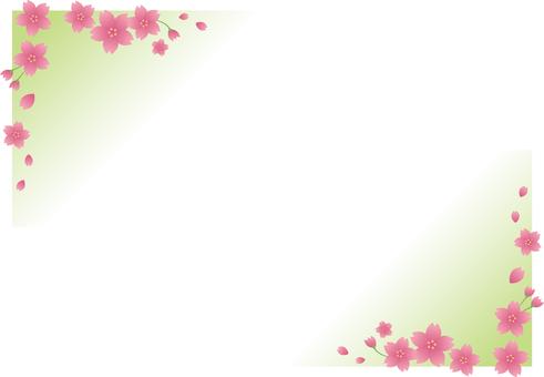 Sakura 002