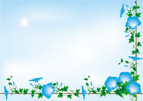 파란 나팔꽃 3