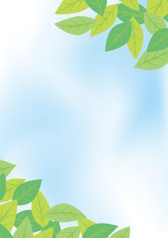 緑の葉のフレーム16