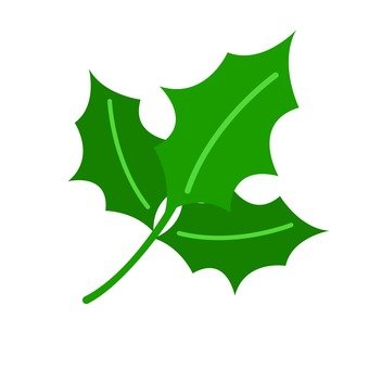 Hiiragi's leaves