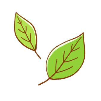두 장의 잎 (녹색)