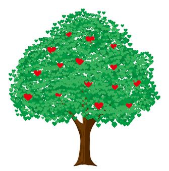 하트 나무