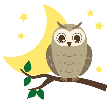 Owl and crescent moon