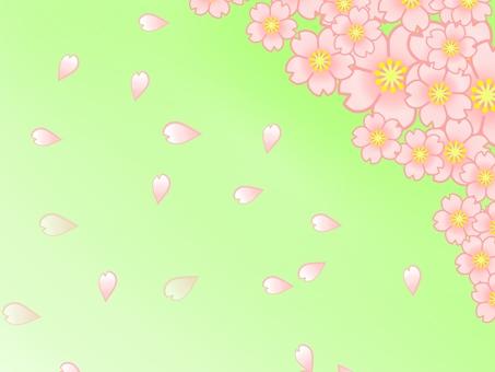 Cherry tree wallpaper