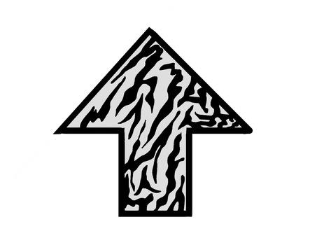 Arrow Zebra Pattern Top