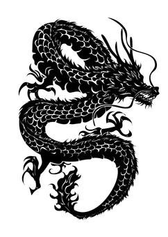 Dragon pattern illustration