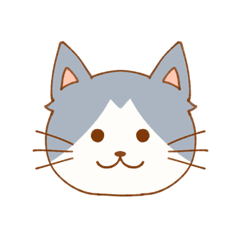 Cat (gray)