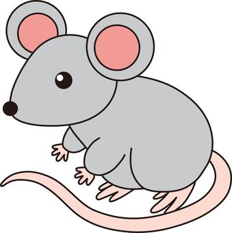 The zodiac (mouse)