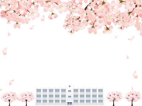 벚꽃과 학교 건물의 구조