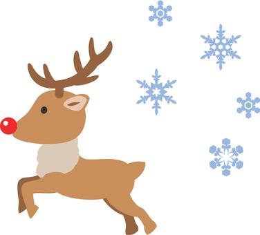 Run reindeer 2