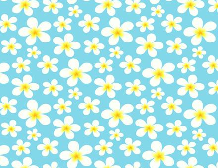Plumeria _ pattern
