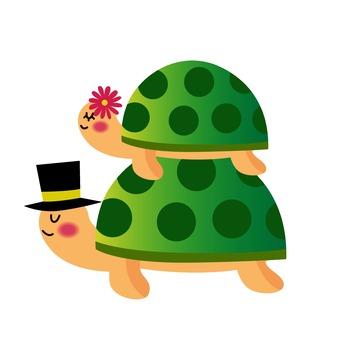 亀の結婚式
