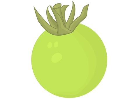방울 토마토 녹색