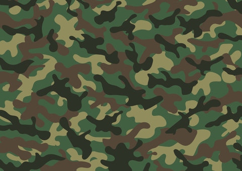 Camouflage pattern 1