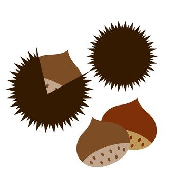 Chestnut picking