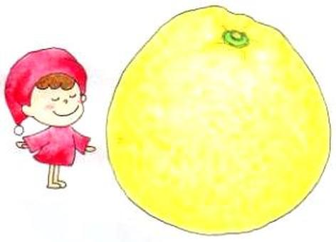 Citrus: Pearl Cit