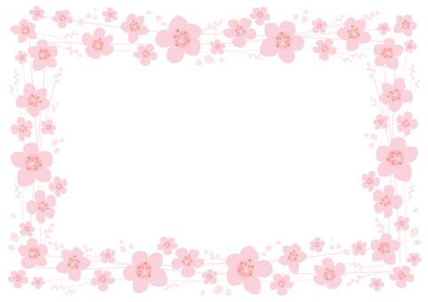 Frame _ Sakura _ 04