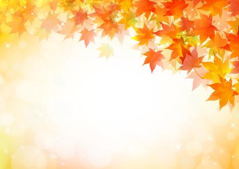 Fall image material 95