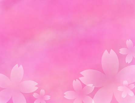 Cherry blossom background pink
