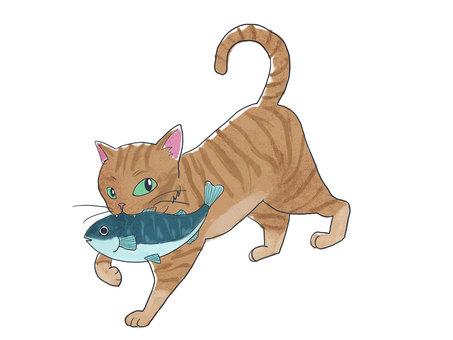 Dora cat with fish