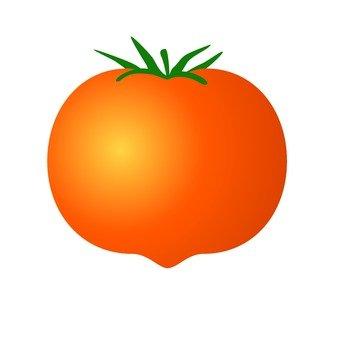 Summer's Template - Tomato