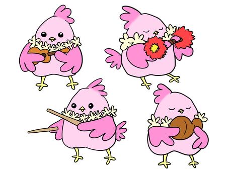 작은 새와 악기 [하와이 악기 편]