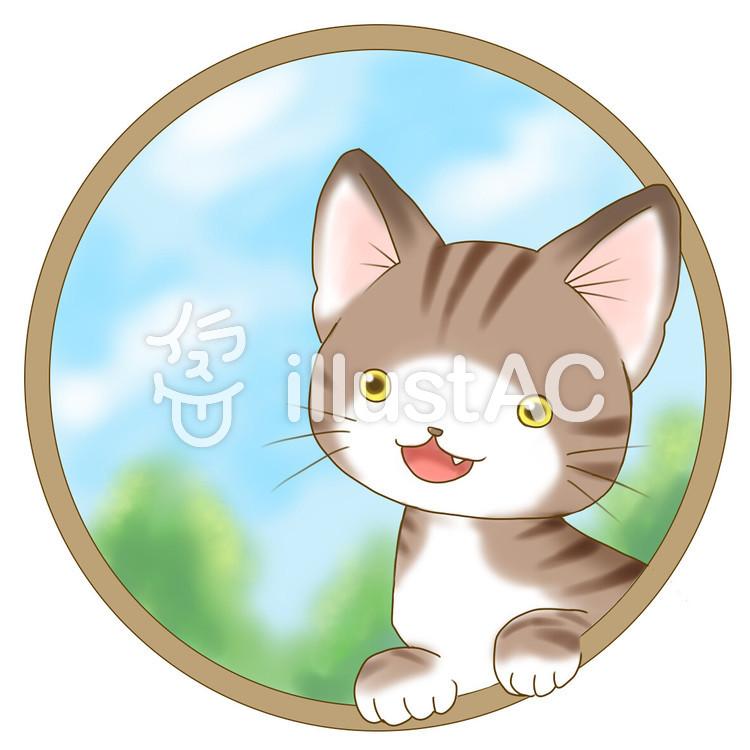 トラ猫-空のイラスト