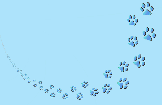 Footprints of cats (blue)