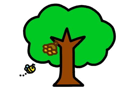 Tree Bees Nest
