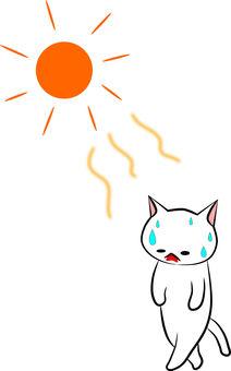 Nyanko-san is hot