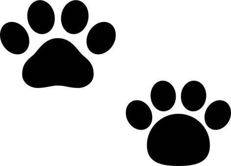 Footprint a