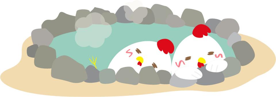 Hot springs _ Chicken